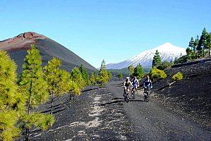 Mit dem Mountainbike in Teneriffa