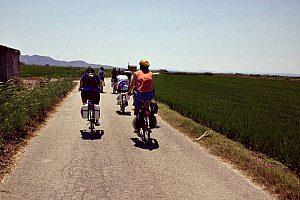Fahrradtour in Valencia zum Albufera Naturpark inkl. Bootsfahrt und Paella