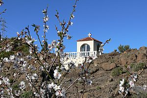Wanderung zur Mandelblüte auf Teneriffa