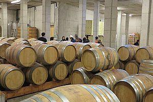 Nahe Tarragona: Kataloniens Weinregion Priorat mit Weinprobe