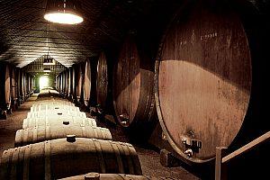 In Portugal Wein genießen