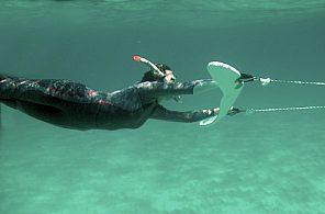 raydiving mallorca unterwasser