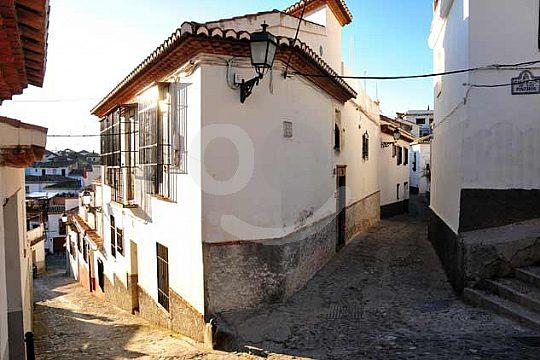 visita guíada por Granada
