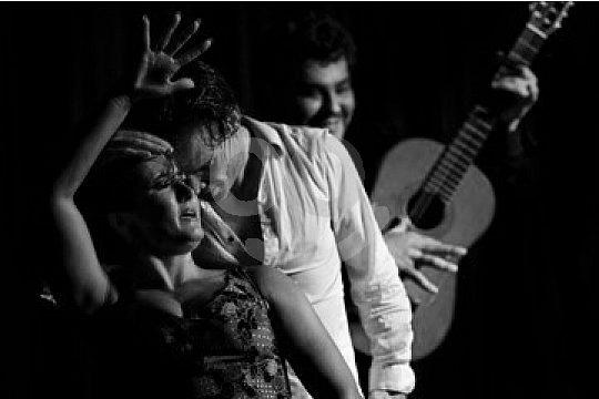 ver un cuadro de flamenco en Granada