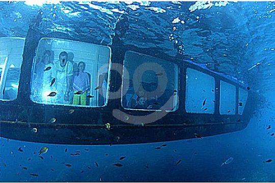 Ventanas subacuaticas con el catamaran Mallorca
