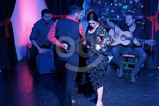 Granada espectáculo de flamenco