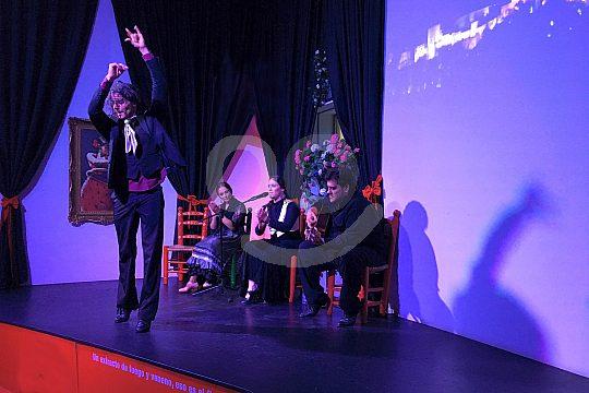 el mejor espectáculo de flamenco de Granada
