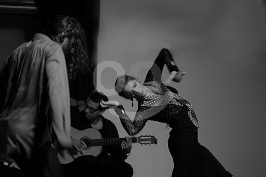 auténtico espectáculo de flamenco en Granada