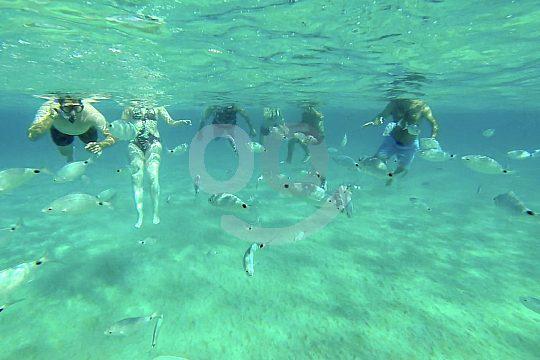 Auf Ibiza schnorcheln