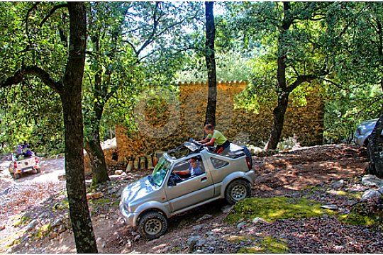 En el bosque durante el jeep safari