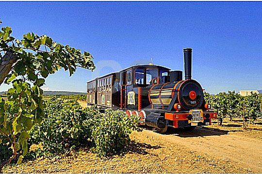 Wine Express tren Binissalem