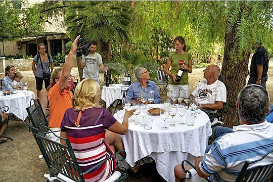 ruta de vino Mallorca bodega