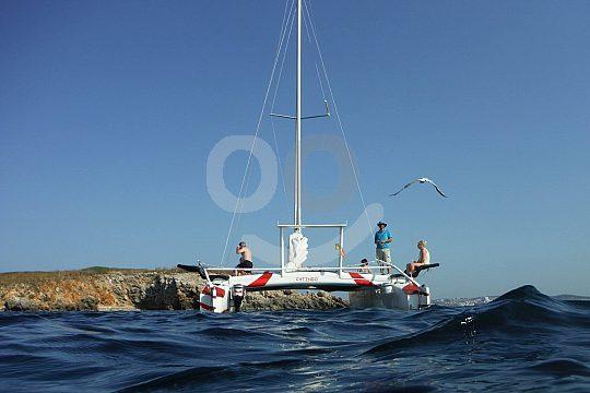 desde Fornells con catamarán