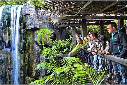 palma aquarium gente mirando