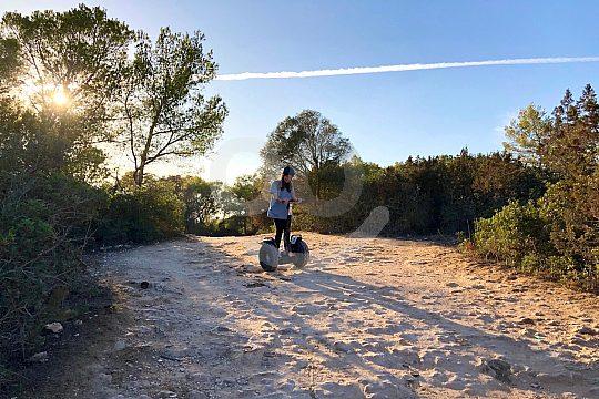 Offroad Segway Abenteuer Mallorca
