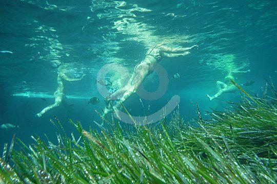 esnorkel