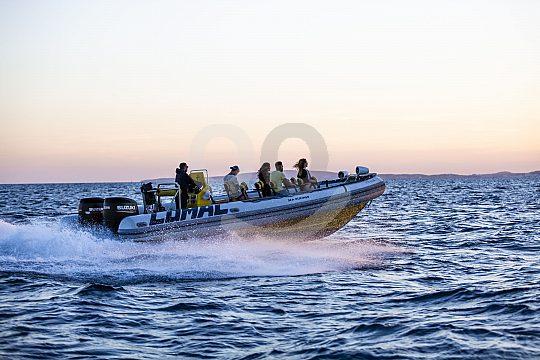 Speed Boot fahren zum Sonnenuntergang