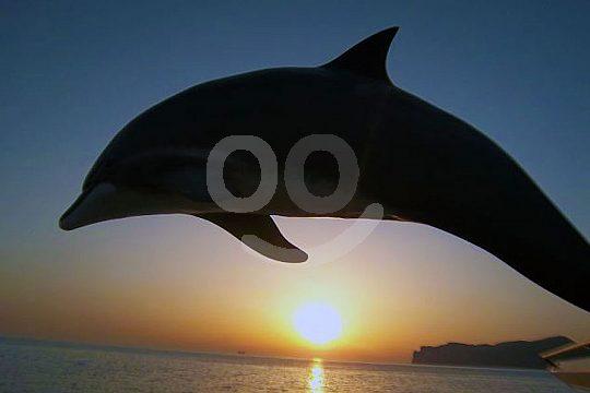 A bordo para ver la puesta de sol