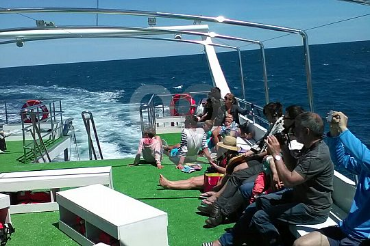 excursión en barco Costa Blanca
