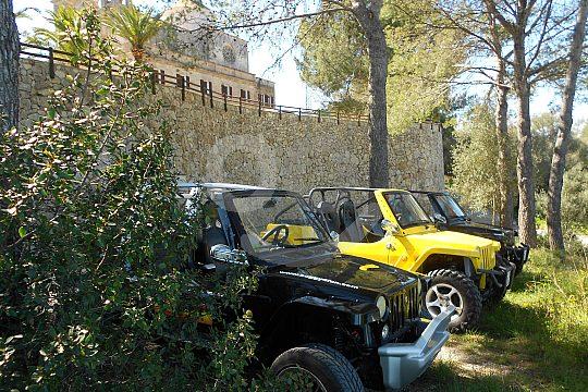 mini jeeps para el máximo placer de conducción