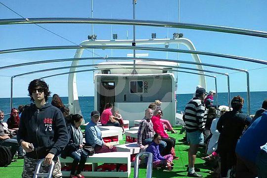 precioso paseo en catamarán Altea Calpe