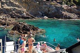 "Excursión en el ""Tropical Delfin"" catamarán con ventanas submarinas en Mallorca"
