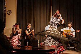 Flamenco in Madrid