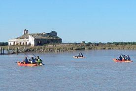Doñana Kayak Tour auf dem Guadalquivir