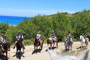 Paseos a caballo en Cala Ratjada en el noreste de Mallorca