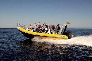 Schnellboot fahren auf Mallorca