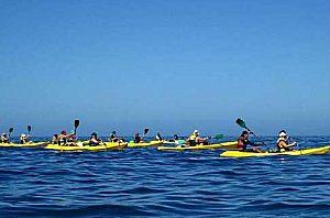 Alquiler de Kayak/ Canoa y disfrute de las hermosas bahías de Gran Canaria en el suroeste