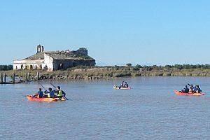 Tour en kayak en en Parque Natural de Doñana por el río Guadalquivir