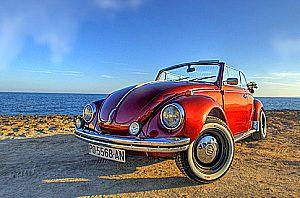 Excursión de medio día con GPS en un coche de época en Mallorca a la zona vitivinícola de Raiguer
