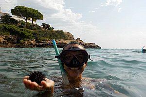Schnorcheln in La Ametlla de Mar