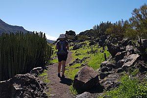 Senderismo por Camino Real Tenerife - con tour en barco Los Gigantes