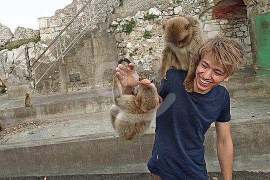 tour to the monkey rock in Gibraltar