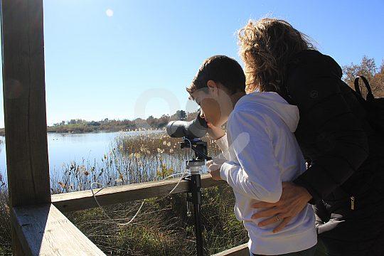 Naturbeobachtung in Albufera