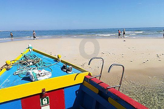Boat tour Ria Formosa
