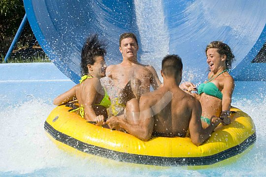 friends in Aqualand