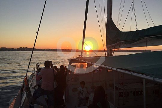 Catamaran tour at sunset in Valencia