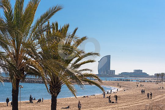 at the coast of Barcelona