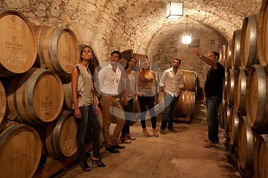 wine tasting near Barcelona in Oller del Mas