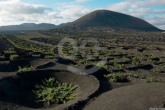 Round trip from Lanzarote