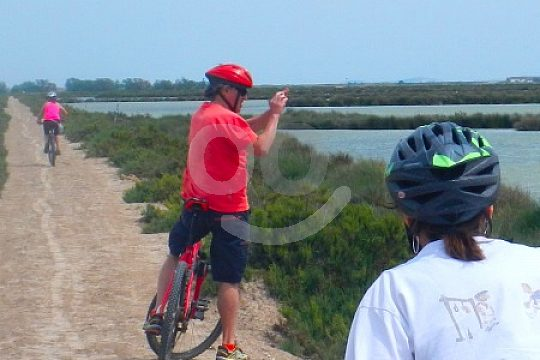 bike tour with guide