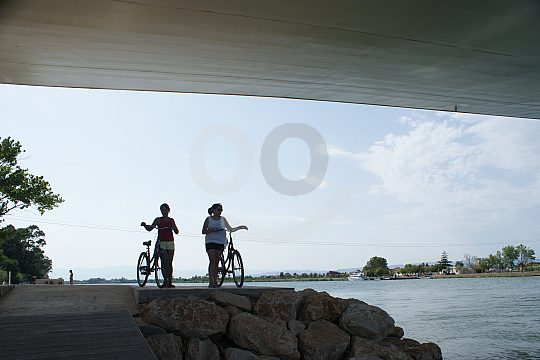 rent a bicycle in Ebro Delta