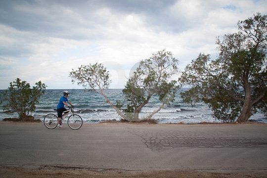 cycling along Aegina's coast on a day tour from Athens