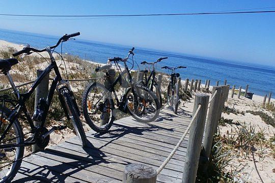 Cycling tour Algarve bikes sea view