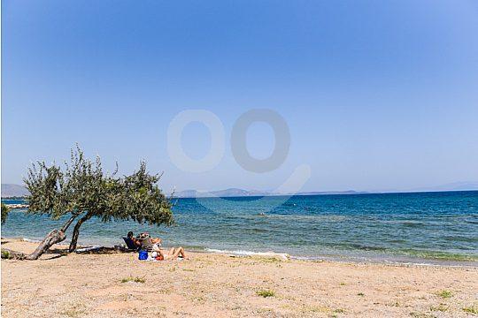 Shinias beach on a bicycle tour near Athens