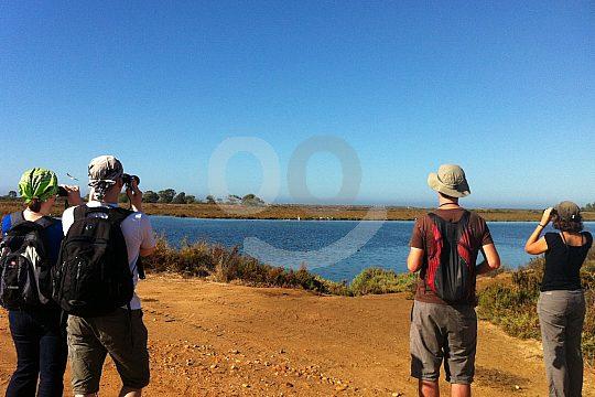Hiking group in the Algarve