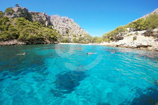 Take a boat trip from the port of Pollensa